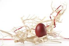 Uovo di Pasqua Rosso fra le filiali Immagine Stock