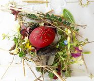 Uovo di Pasqua rosso ornato con i fiori selvaggi e le erbe freschi immagine stock libera da diritti