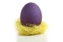 Uovo di Pasqua scuro in nido Fotografia Stock