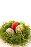 Uovo di Pasqua Sulla priorità bassa dell'erba verde Fotografia Stock