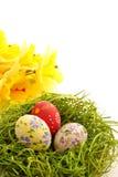 Uovo di Pasqua Sulla priorità bassa dell'erba verde Immagini Stock Libere da Diritti