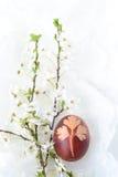 Uovo di Pasqua tradizionale Fotografia Stock Libera da Diritti