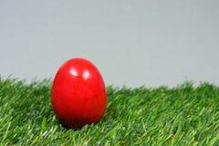 Uovo di Pasqua variopinto Fotografie Stock Libere da Diritti