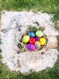 Uovo di Pasqua variopinto con il fondo dell'erba verde Immagini Stock