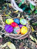 Uovo di Pasqua variopinto con il fondo verde ed asciutto delle foglie Immagini Stock Libere da Diritti