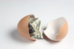 Uovo di provenienza dalla zona del dollaro Immagine Stock