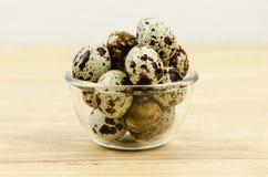 Uovo di quaglia Immagine Stock
