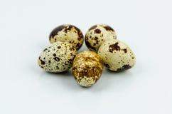 Uovo di quaglia Fotografia Stock Libera da Diritti