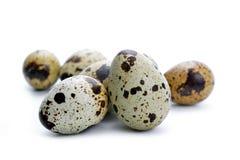 Uovo di quaglia isolato Fotografie Stock Libere da Diritti