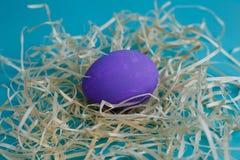 Uovo di Violet Easter in fieno su fondo blu, fine su Pasqua, s fotografie stock libere da diritti