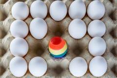 Uovo dipinto come una bandiera di LGBT Vanti il transessuale bisessuale gay lesbico di diritti di mese LGBT Mese di orgoglio di s fotografia stock libera da diritti