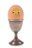Uovo divertente Fotografia Stock Libera da Diritti