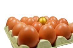Uovo dorato Fotografie Stock Libere da Diritti