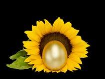 Uovo dorato del tesoro fortunato di Pasqua sopra il nero Immagini Stock