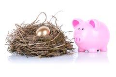 Uovo dorato di porcellino Immagini Stock Libere da Diritti