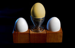 Uovo dorato differente fra il usuale Concetto di successo sul nero Immagine Stock Libera da Diritti