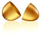 Uovo dorato lucido aperto Fotografia Stock Libera da Diritti