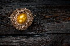 Uovo dorato in un nido fotografia stock libera da diritti