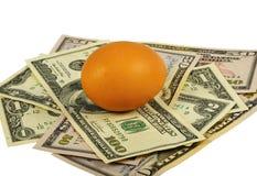 Uovo e dollari di Brown Fotografie Stock Libere da Diritti