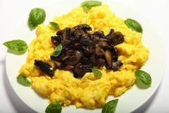 Uovo e mushooms rimescolati Gourmet immagini stock