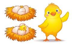 Uovo e piccolo pollo illustrazione di stock
