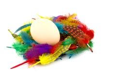 Uovo e piume Fotografia Stock