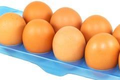 Uovo fresco Immagini Stock