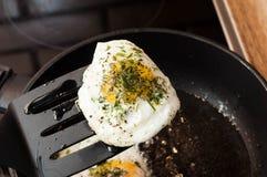 Uovo fritto con le erbe ed il pepe su una spatola sopra la pentola pronta da mangiare come prima colazione perfetta fotografie stock libere da diritti