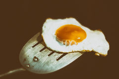 Uovo fritto e spatola fotografia stock libera da diritti
