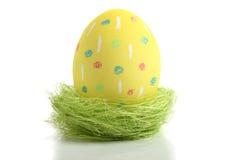 Uovo giallo dell'aster in nido Fotografie Stock