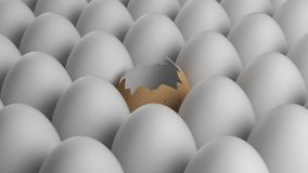 Uovo giallo rotto Fotografie Stock