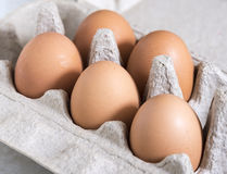 Uovo, Hen Eggs fotografie stock