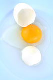 Uovo incrinato in tazza Immagine Stock Libera da Diritti