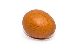 Uovo isolato su fondo bianco immagini stock libere da diritti
