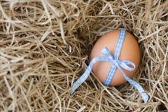 Uovo legato con il nastro Immagini Stock Libere da Diritti