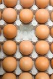 Uovo mancante Fotografia Stock Libera da Diritti