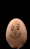 Uovo marrone sorridente Immagini Stock Libere da Diritti