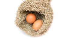 Uovo nei nidi dell'allodola Fotografia Stock Libera da Diritti