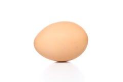 Uovo nel fondo dell'isolato Immagini Stock