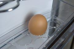 Uovo nel frigorifero Fotografia Stock Libera da Diritti