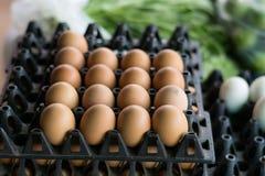 Uovo nel pacchetto Immagine Stock