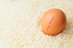 Uovo omega più Immagini Stock