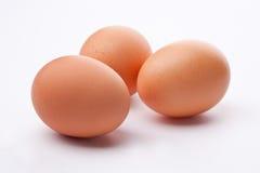 Uovo organico Fotografia Stock Libera da Diritti