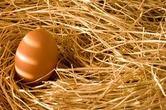 Uovo in paglia dell'azienda agricola Immagini Stock Libere da Diritti