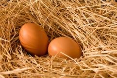 Uovo in paglia dell'azienda agricola Immagine Stock