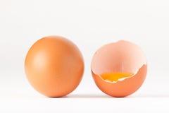 Uovo rotto Fotografie Stock Libere da Diritti