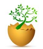 Uovo rotto con l'albero ecologico Fotografia Stock
