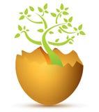 Uovo rotto con la pianta Fotografie Stock
