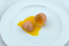 Uovo rotto del pollo Immagini Stock