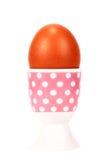 Uovo sodo nel supporto Fotografia Stock